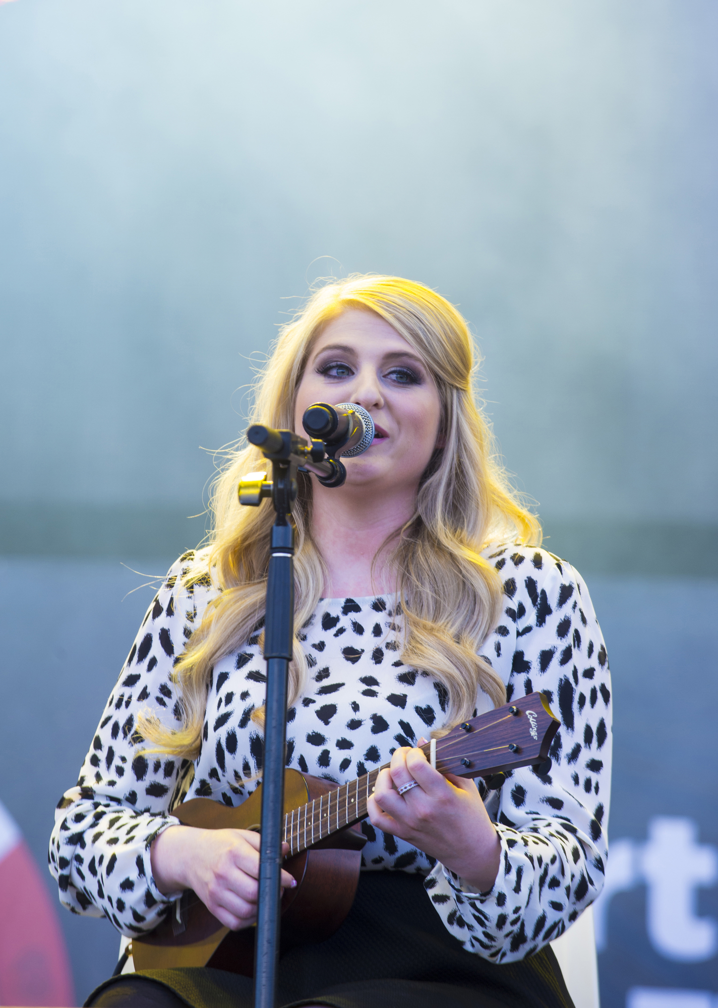 Meghan Trainor biography